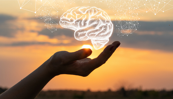 Want to Deliver a Better CX? Bypass your agents' brains - Crossfuze